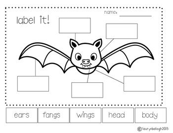 BAT CRAFT PACK - TeachersPayTeachers.com
