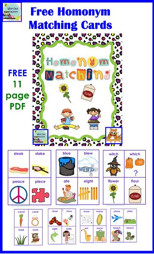 Bunnicula and Homonyms Freebie --> love this post on @Carolyn Wilhelm, NBCT, Wise Owl Factory about a fab book with super paired activity! #weteach