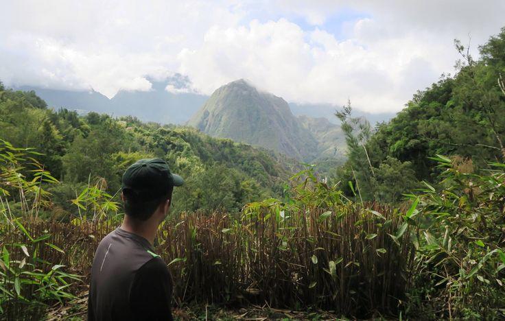 Reunion Island: A summer tourist destination?