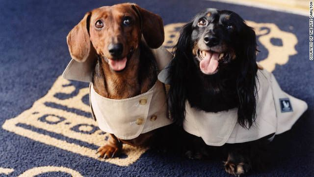 Dog friendly hotels- we love to take them along, now if only we could afford these!
