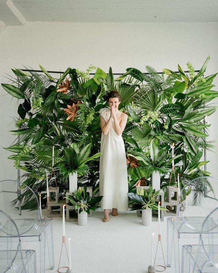 tropical plant backdrop - photo Jen Sosa
