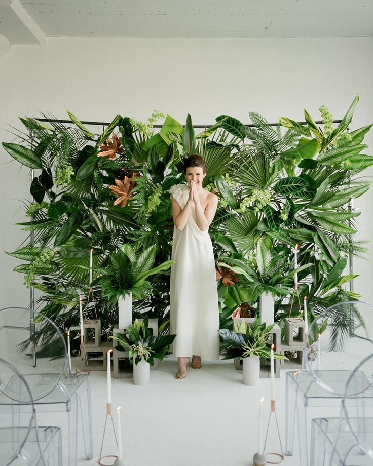 tropical plant backdrop - photo Jen Sosa