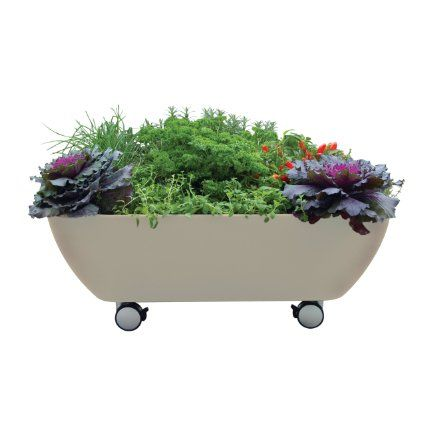 13 best raised garden beds images on pinterest herb garden planter gardening and garden planters Keter easy grow elevated flower garden planter