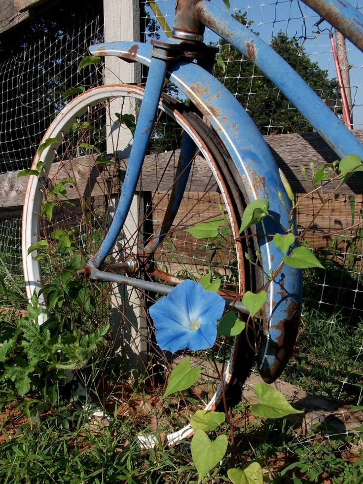 1000 images about old rusty things on pinterest planters vintage - 1000 Images About Tricycle On Pinterest Gardens