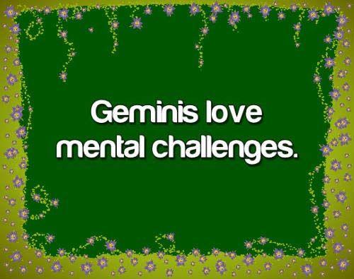 Gemini Characteristics
