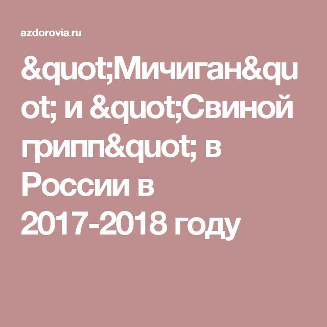 """""""Мичиган"""" и """"Свиной грипп"""" в России в 2017-2018 году"""