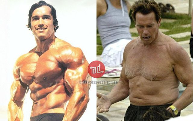 » Muscled celebrities before and after   Before and After   Photos, Biography and Family