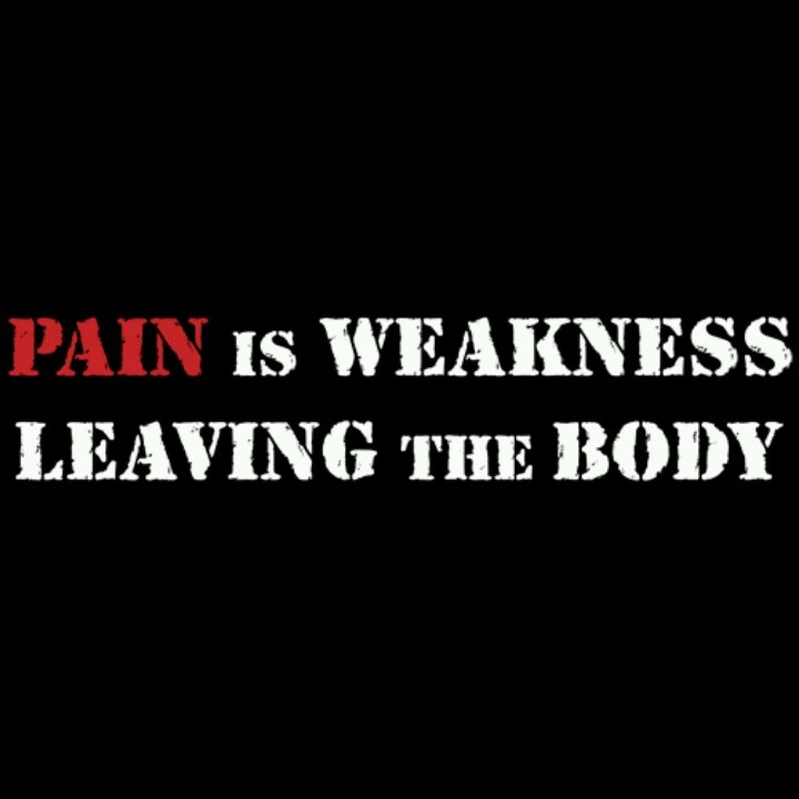 Pain Is Weakness Leaving The Body! -Marines Love This
