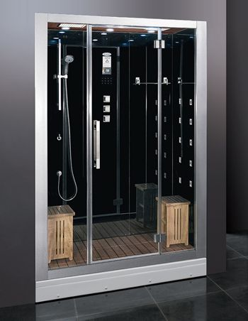 Ariel platinum 2-person steam shower (I'd get this in white rather than black)...   Steam Sauna, Acupuncture Massage, Rainfall Ceiling Shower, Chromatherapy Lighting, FM Radio,   Aromatherapy port for scented oils, Computer Control Panel with Timer