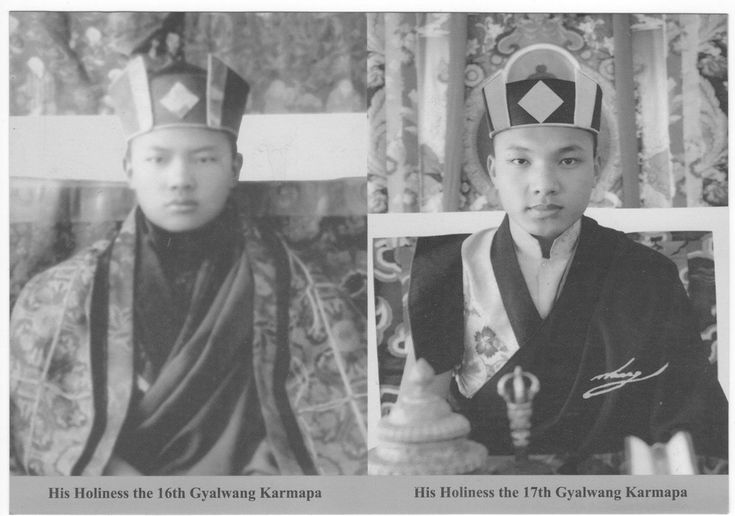 飄然出塵 - Karmapa - 第16世與第17世大寶法王.jpg