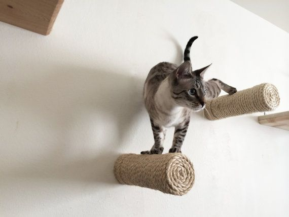 Floating sisal cat post by CatastrophiCreations on Etsy > this shop has so much cool stuff for kitties - love  it!