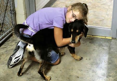 Give a shelter dog a loving home.