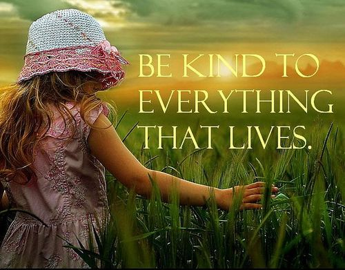 Be kind to everything that lives: Words Of Wisdom, Golden Rules, Inspiration, Kind Quotes, Mothers Earth, Be Kind, Baby Girls Pictures, Kind Matter, Kid