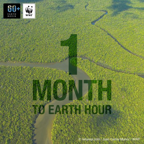1 month to #EarthHour! Take action NOW! Use #YourPower to change climate change. http://ehour.me/take-action-fb