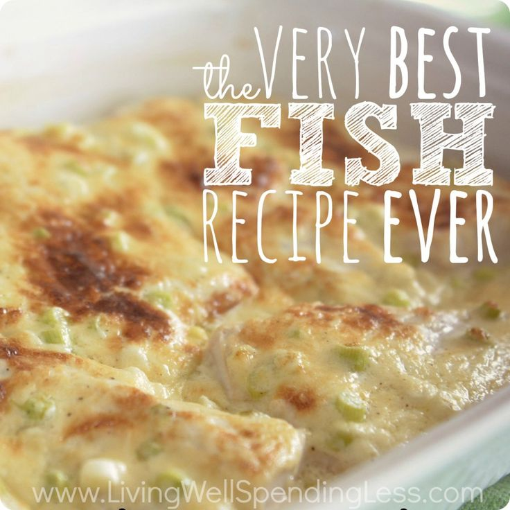 Yes!  Always looking for fish options... The Very Best Fish Recipe Ever | Easy Broiled Fish Recipe