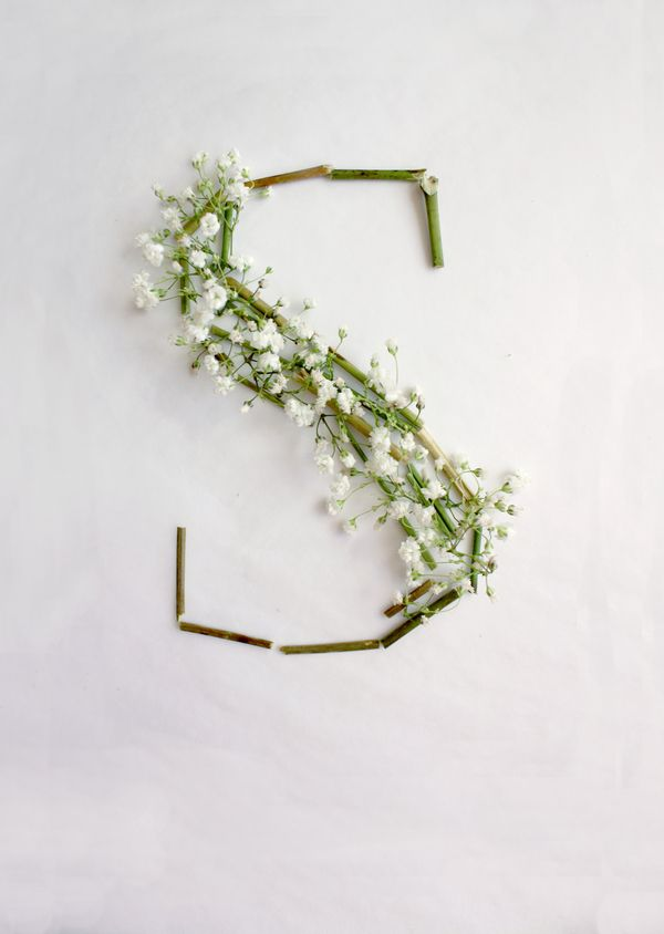 s is for spring.  #spring