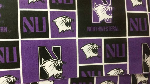 Check out this item in my Etsy shop https://www.etsy.com/listing/491126728/northwestern-college-medical-scrubs-plus