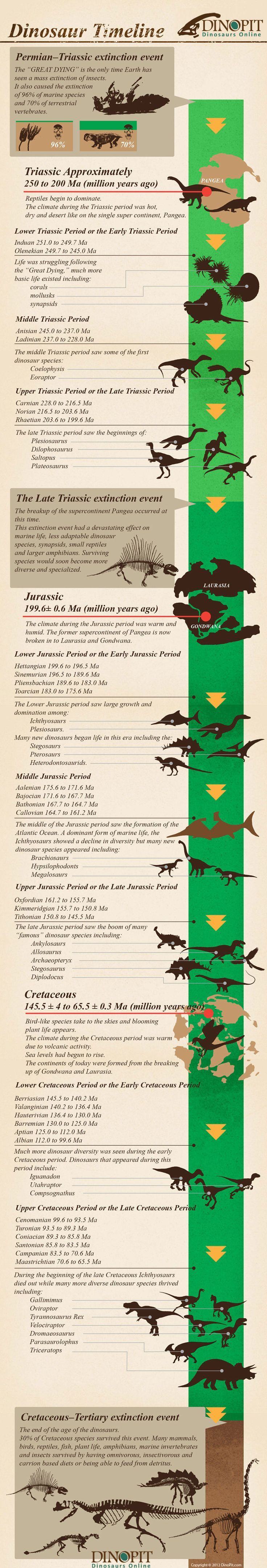 Ever wondered what the dinosaur timeline looks like? Take a look at this infographic copyrighted to http://www.dinopit.com