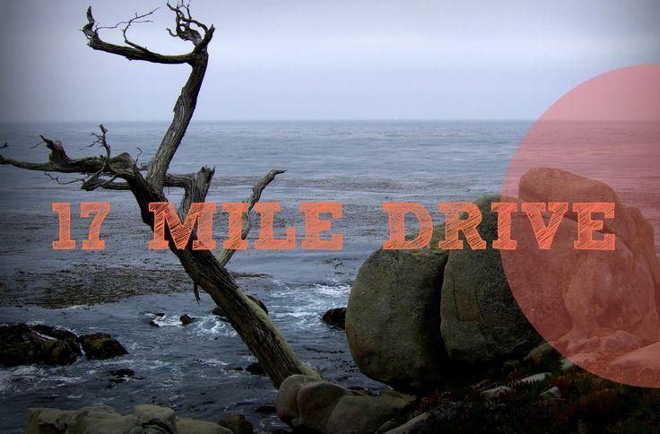 California - The 17 Mile Drive