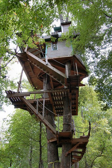 429 Best Images About Cool Tree Houses On Pinterest