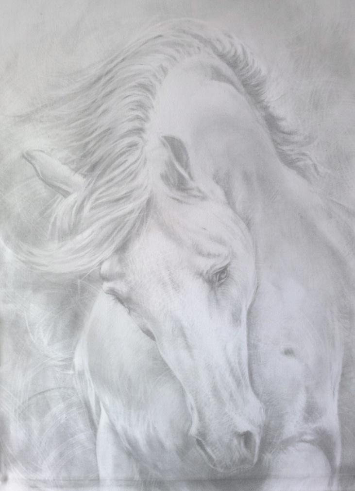 """Work in progress 18""""x 24"""" graphite on canvas"""