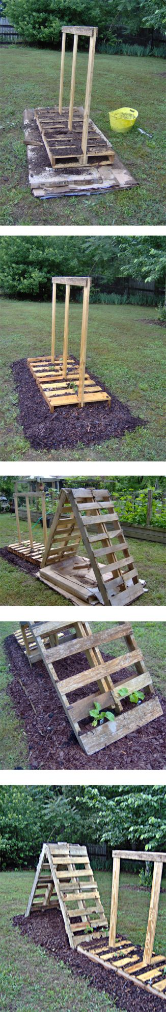 Pallet Garden Project - trellis' for growing