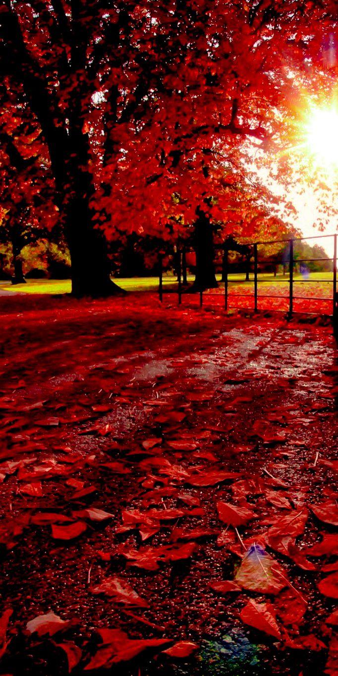 Beautiful autumn in London, England