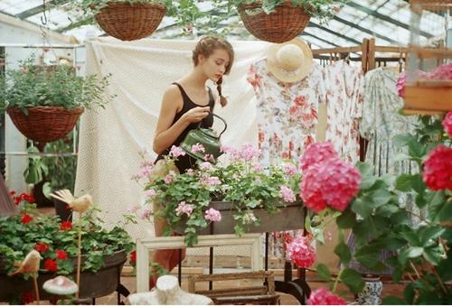 : Mariam Sitchinava, Mariamsitchinava Photography, Jasmine, Greenhouse, Secret Garden, Dream House, Green House, Flower, Garden Spaces