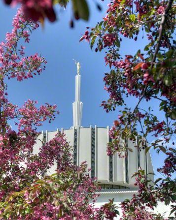old Ogden, Utah LDS temple