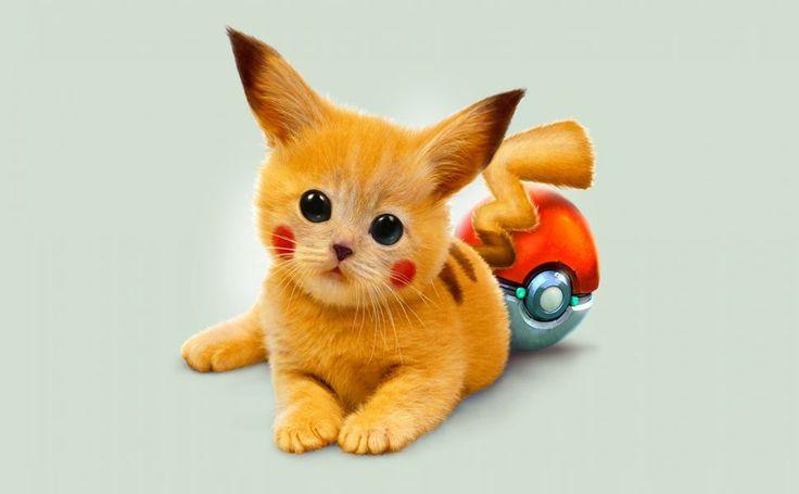 Red Pokemon HD Wallpaper