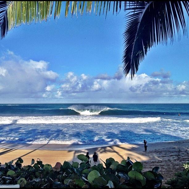 Banzai Pipeline, North shore, Oahu, HAW...