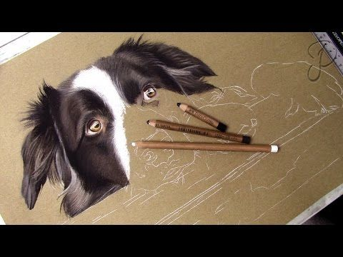 TUTORIAL #8 - How to draw a realistic dog snout - Channel Sheldene Fine Art - YouTube