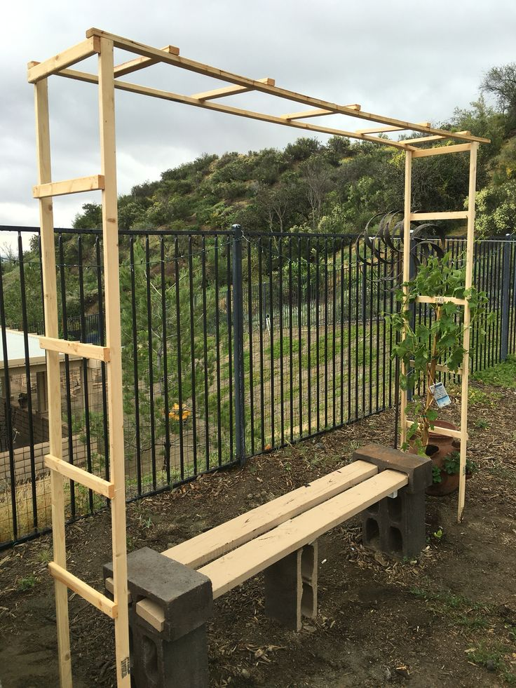 Trellis For My Grape Vine Simple Diy Under 10 Garden