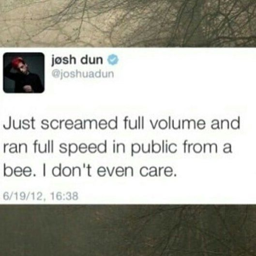 Josh Dun is a cinnamon roll