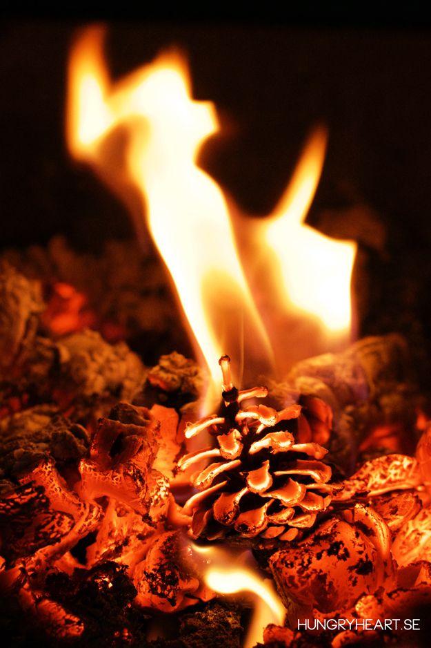 Så här gör du miljövänliga braständare av kottar och överblivna ljusstumpar. Braskottarna kan även användas för att tända grill utan tändvätska.