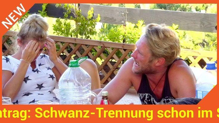 Wussten die beiden da schon dass ihre Liebe bald vorbei ist? Seit wenigen Minuten steht fest: Saskia Atzerodt (25) und ihr Ex-Schatz Nico Schwanz (39) sind die Gewinner von Das Sommerhaus der Stars. Trotz des Sieges trennte sich das Duo bereits vor Ausstrahlung der ersten Folge. Im Finale heute Abend wurde jedoch klar: Schon im Sommerhaus war das Liebes-Aus absehbar!   Source: http://ift.tt/2j8IgFC  Subscribe: http://ift.tt/2rHdxCS Sieg & Antrag: Schwanz-Trennung schon im SHdS absehbar