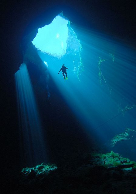 Scuba diving in Kilsby Sinkhole, Mt Gambier, South Australia.