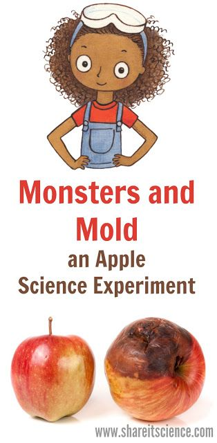 Kids love gross science! Try this easy Apple Decomposition Science Experiment at home or at school. Pair it with the book: Monsters and Mold from the Zoey and Sassafras series and you'll really have kids thinking like scientists. Great open-ended science project for kids at school or at home.