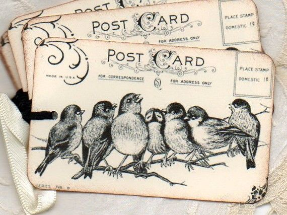 post cardVintage Postcards, Wedding Favors, Hanging Tags, Vintage Birds, Gift Tags, Places Cards, Favors Tags, Birds Crafts, Vintage Cards