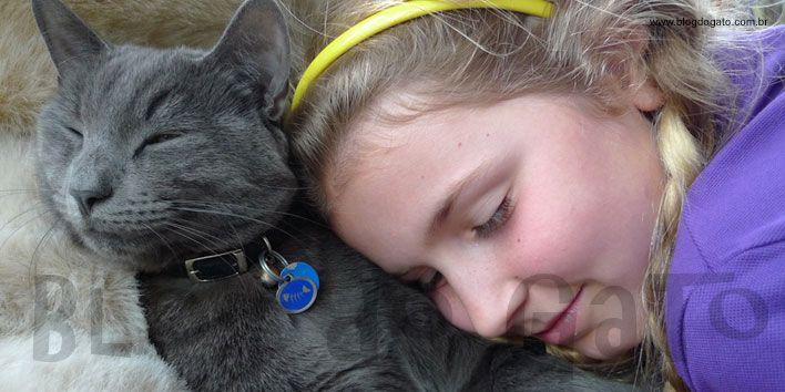 Inteligente e curioso, o Azul Russo é considerado um gato tranquilo, dócil e muito sensível. Saiba tudo sobre a raça Azul Russo no Blog do Gato.