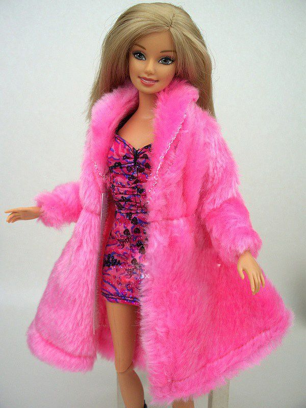 from Wholesale Home s store about New Design 2016 Pink Rose Blue White  Plush Coat Winter Wear Dress Snowsuit Clothing Outfit Clothes For Toy Barbie  Doll. 17 Best images about Barbie Winter Dress on Pinterest   Gold beads