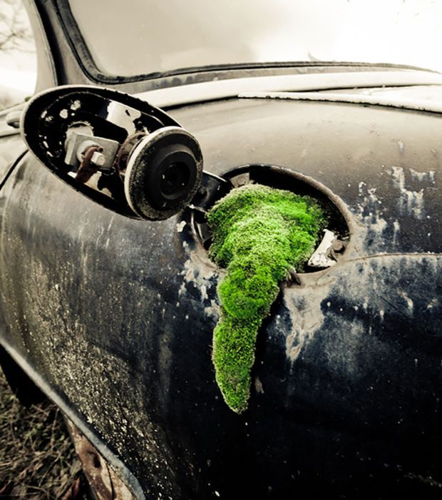 La casse automobile réserve parfois bien des surprises
