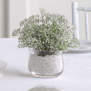 """Decoración con flores """"velo de novia"""", también conocidas como nube, gisófila o paniculata. Esta flor ideal para decorar bodas es bella y económica."""