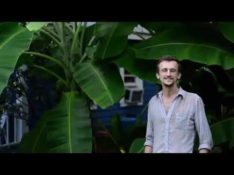 Richard Powell walks you through his 1 year old urban permaculture design showing 2 grey water filtration systems; a shower fed banana circle and a laundry fed 4 level filtration bed setup growing aquatic plants such as taro; and his personal reasoning as to why he has converted his lawn into a tropical garden.