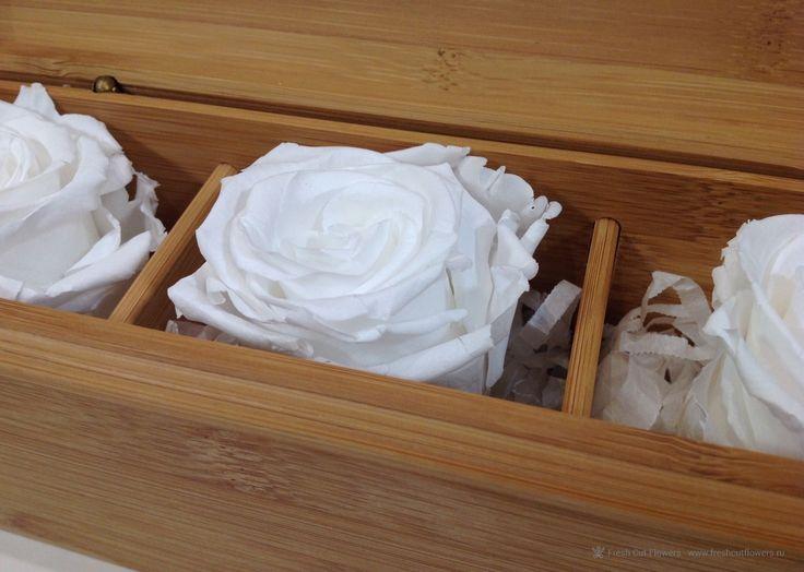 Цветы в коробках. Стабилизированные розы в шкатулке из бамбука. Прекрасный подарок. Онлайн заказ. Доставка.
