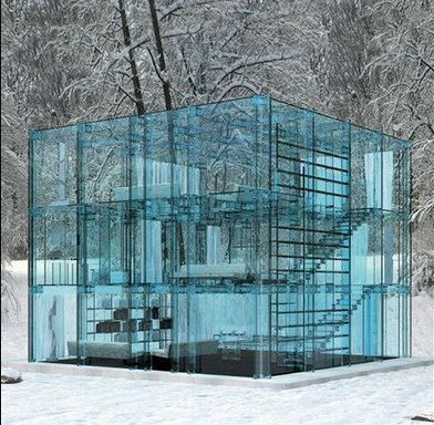 My favorite glass house, but I can't remember the designer. A stunning heating nightmare, perhaps.