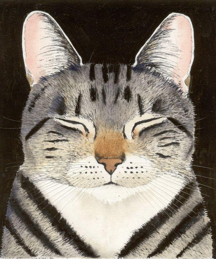 Cat Nap ~ Kay McDonagh