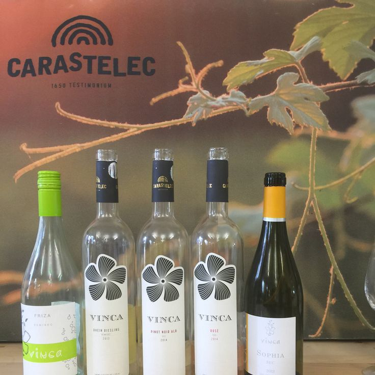 Crama Carastelec in Salaj http://winesylvania.com/wineries/2015/9/28/crama-carastelec