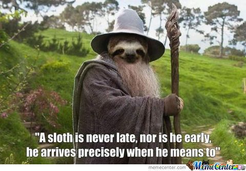 sloth funny | Sloth Is Never Late... - Meme Center
