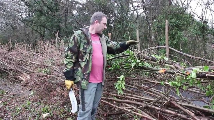 very interesting documentary on traditional hedge laying in the South of England, to keep animals in